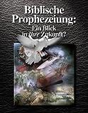 Biblische Prophezeiung: Ein Blick in Ihre Zukunft?