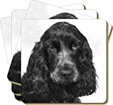 4x Blue Roan Cocker Spaniels Picture Coasters Gift Set, Ref:AD-SC25C