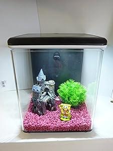 Mini 8 Fish Tank, Complete Home Aquarium, With Filter & L.E.D Light ...