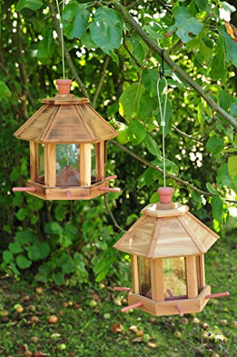 2-x-bird-house-nesting-box-set-of-2-natural-cedar-natural-salmon-reddish-new-forage-area-flamed-wood