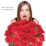 Flower Delivery - 25 GIANT RED ROSES. ON SALE TODAY ONLY! Incredibly Fragrant Roses. Featured On 7NEWS. Amazing Quality & Freshness. 2 Dozen Long Stem Roses Only from Spring in the Air Luxury Roses. A Lovely Experience With Roses or Your Money Back!