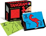Tangram Magnetic Puzzle-a-Day: 2010 Day-to-Day Calendar