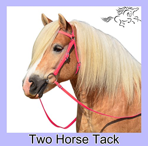 Australian Bridle & Reins Made From Beta Biothane - Small Pony Size, Hot Pink Color