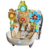 My Nature Pals Stroll Tiny Love Take-Along Arch, rattels, toy, baby, carseat, stroller, car, seat