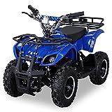 NEU Elektro Kinder Miniquad TORINO 800 Watt ATV Pocket Quad