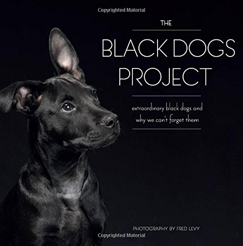 The Black Dogs Project: Extraordinary Black Dogs and Why We Can't Forget Them PDF