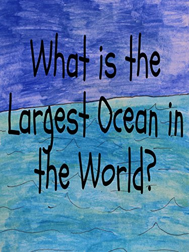 What is the Largest Ocean in the World?