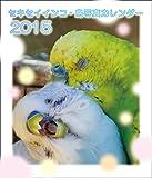 セキセイインコ鳥写真カレンダー 2015 (CDサイズ。ワンタッチで卓上にも壁掛けにもなる3Wayカレンダー)