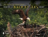 Inside a Bald Eagle s Nest: A Photographic Journey Through the American Bald Eagle Nesting Season
