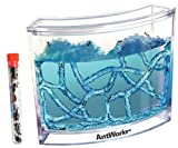 Live Blue Gel Ant Habitat Shipped with 25 Live Ants Now (1 Tube of Ants)