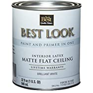 Best Look Latex Flat Brilliant White Paint And Primer In One Ceiling Paint-BRLNT