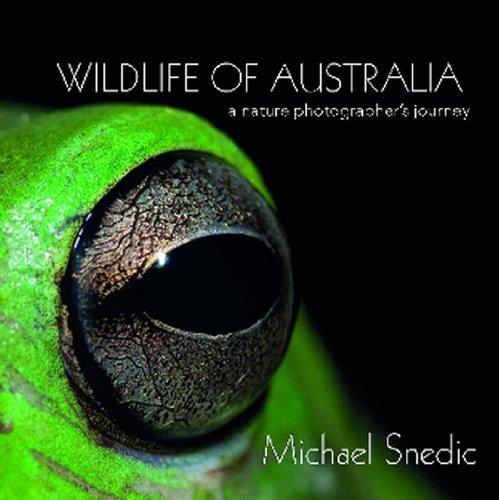 Wildlife of Australia Nature Photography