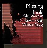 Christmas in Hawaii (feat. Walter Egan)