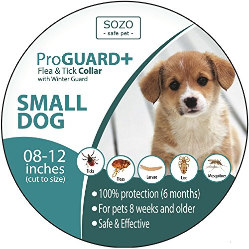 flea-tick-collar-small-dog-proguard-plus-ii-safe-pet-protection-from-pest-bites-infestations-larvae-