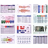 Complete Horizontal Badge Card Reference Set Pocket ID Guide Graduation Gift Set