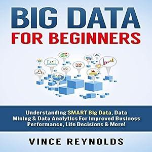 Big Data for Beginners Audiobook
