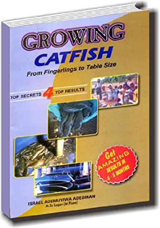 Growing catfish from fingerlings to table size fish for Feed and grow fish free no download