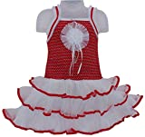 Cute Fashion Kids Girls Baby Princess Velver and Soft Net Party Wear Flower Dresses Clothes 3 Months to 12 Months (Red, 3-6 Months)
