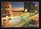 41 HOLLYWOOD POSTCARD #41 - from Hibiscus Express