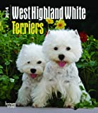 BrownTrout West Highland White Terriers 2014 Desk Diary