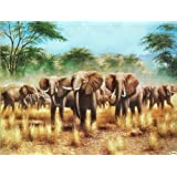 "Dolls Of India ""Wild Elephants"" Reprint On Paper - Unframed (27.94 X 22.23 Centimeters)"