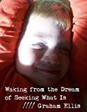 Waking from the Dream of Seeking What Is (English Edition)