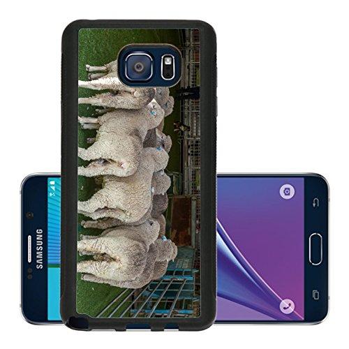 liili-premium-samsung-galaxy-note-5-aluminum-backplate-bumper-snap-case-2015-sydney-royal-easter-sho