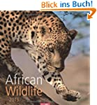 African Wildlife 2013
