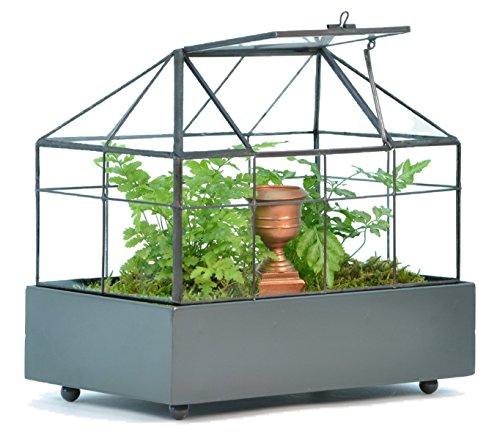 Indoor Kitchen Herb Garden Kit Fresh Ready To Pick Herbs