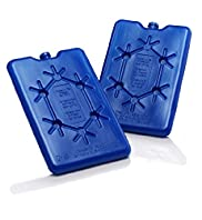 2 Pack Ice Blocks