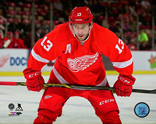 Pavel Datsyuk Detroit Red Wings 2014-2015 NHL Action Photo (Size: 8 x 10) eric fehr washington capitals nhl action photo size 8 x 10