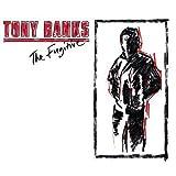 The Fugitive by Tony Banks