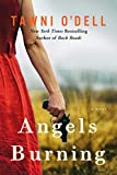 img - for Angels Burning book / textbook / text book