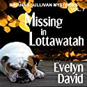 Missing in Lottawatah: Brianna Sullivan Mysteries (       UNABRIDGED) by Evelyn David Narrated by Wendy Tremont King