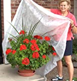 Frost Protek Plant Cover: Large, White
