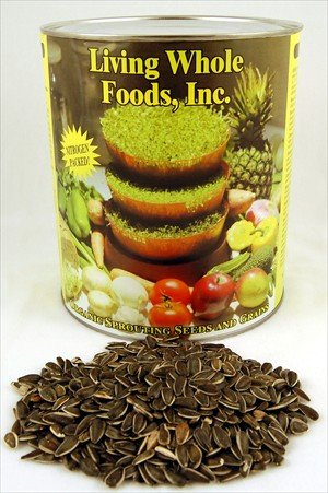 Organic Sunflower Sprouting Seeds (Un-Shelled)- 3 Lbs- Edible Seed, Gardening, Hydroponics, Growing Salad Greens, Sprouts & Food Storage - Sun Flower