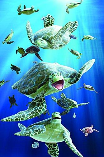 Gift Trenz Turtles- 3D Magnet