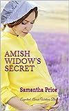 Amish Widow's Secret: Amish Romance (Expectant Amish Widows Book 9)