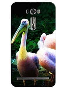 Clarks Swan Inspired Hard Plastic Printed Back Cover/Case For Asus Zenfone 2 (ZE601KL)