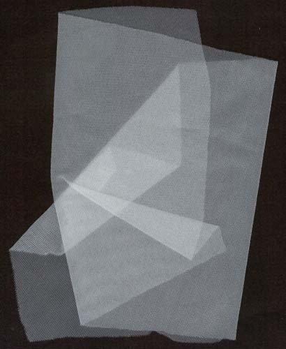 white-no-see-um-mosquito-tent-netting-net-100-nylon-fabric-by-the-yard
