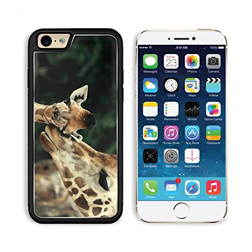 Giraffe Wildlife Animal Baby Mammal Nature African Apple Iphone 6 Tpu Snap Cover Premium Aluminium Design Back Plate Case Customized Made To Order Support Ready Liil Iphone_6 Professional Case Touch Accessories Graphic Covers Designed Model Sleeve Hd Temp front-923639