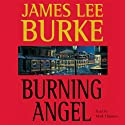 Burning Angel: A Dave Robicheaux Novel, Book 8