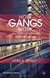 How Gangs Work: An Ethnography of Youth Violence (St. Anthony's)