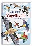 Mein großes Vogelbuch: Abstammung