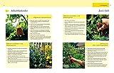 Gartenjahr-fr-Einsteiger-Schritt-fr-Schritt-zum-grnen-Paradies