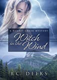 Witch in the Wind: (Bandit Creek Sweet)