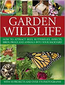 Garden Wildlife: How to Attract Bees, Butterflies, Insects ...