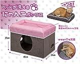 猫 ベッド 洗える にゃんこ BOX 快適生活 ストレージスタイル
