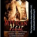 Mexican Heat: Crimes & Cocktails Series, Book 1 Hörbuch von Josh Lanyon, Laura Baumbach Gesprochen von: Holden Madagame