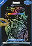 ENGRAVING ART - TROPICAL FISH - RAINBOW BOARD SIZE 5'' X 7''